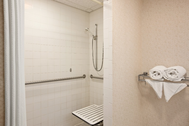 Handicap Accessible Shower 8 of 16