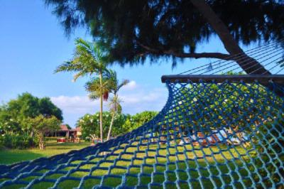 Relax On A Hammock 6 of 26