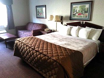 Standard Room With One King Bed & Sofa Bed 9 of 29