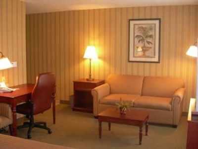 Suite Living Area 9 of 11